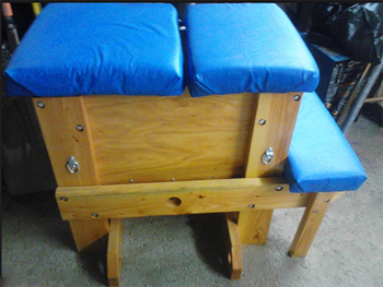 Picture of Dulexe Spanking Bench